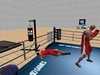Boxing 010