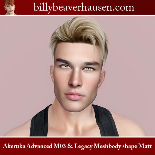 Akeruka Advanced M03 & Legacy Meshbody Shape Matt