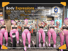 Body Expressions HUD - [Chris Two Designs]