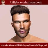 Akeruka Advanced M03 & Legacy Meshbody Shape Joel