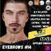 #TS# Beard #14 BOM - Lel Evo/Catwa HD Pro/AK/ Classic