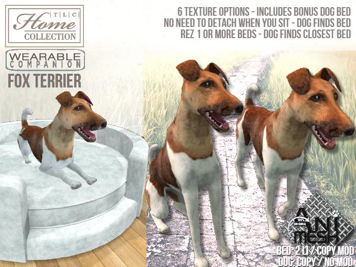 Fox Terrier, Companion