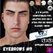 #TS#  Eyebrows #11 BOM - Lel Evo/Catwa HD Pro/ Classic