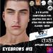 #TS#  Eyebrows #12 BOM - Lel Evo/Catwa HD Pro/ Classic