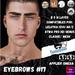 #TS#  Eyebrows #17 BOM - Lel Evo/Catwa HD Pro/ Classic