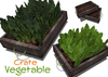 [ FULL PERM] Vegetable Crate - spinach