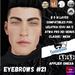 #TS#  Eyebrows #21 BOM - Lel Evo/Catwa HD Pro/ Classic