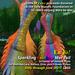 En Yo! SWF Benefit Mermaid/Merman Tails--Mesh Body and Fitmesh versions--RAINBOW
