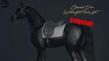 Cheval D'or / TeeglePet Friesian / Wellington Dressage Set