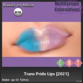[MC] Trans Pride Shadow (wear to unpack)