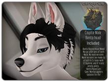 .:C/X:. Coyote - Male Bento Head
