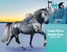 [FMC] Teegle Horse mod - Dapple Grey