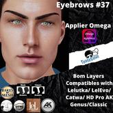 #TS#  Eyebrows #37 BOM - Lel Evo/Catwa HD Pro/ Classic