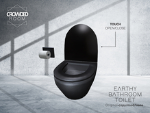Crowded Room - Earthy Bathroom Toilet