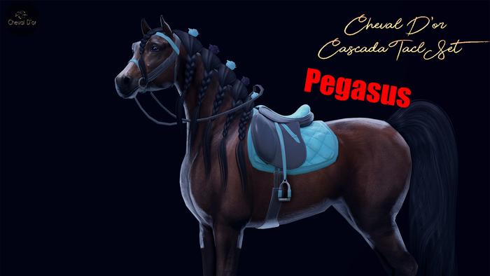 Cheval D'or / TeeglePet Pegasus / Cascada Tack Set.