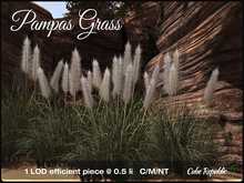 Pampas Grass Mesh & Materials