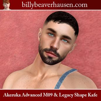 Akeruka Advanced M09 & Legacy Meshbody Shape Kafe