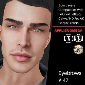 #TS#  Eyebrows #47 BOM - Lel Evo/Catwa HD Pro/ Classic