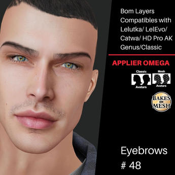 #TS#  Eyebrows #48 BOM - Lel Evo/Catwa HD Pro/ Classic