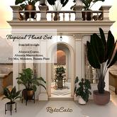 .: RatzCatz :. Tropical Plants Set I