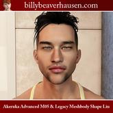 Akeruka Advanced M05 & Legacy Meshbody Shape Liu