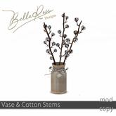 [BR] Vase & Cotton STems