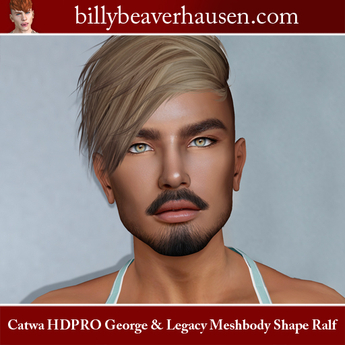 Catwa HDPRO George & Legacy Meshbody Shape Ralf