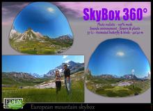 European mountain skybox