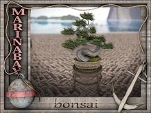 bonsai 13