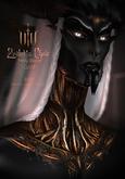/VaeV\ Zealot's Choir - Holy Blood - Gold