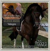 Texture Barn: Legends Series Limited Edition Valegro for Teegle