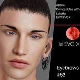 #TS#  Eyebrows #52 - Evo/EvoX