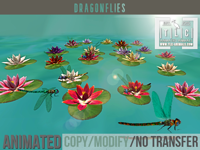 Dragonfly, lilies, set