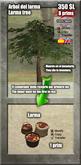 Larma Tree [G&S]