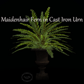 Bricolage Maidenhair Fern in Cast Iron Urn