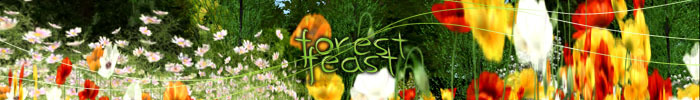 Forestfeastbanner