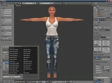 [Wiz] IMPORTER Avatar Mesh to Blender 2.5 2.6