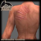 Scar Claw back