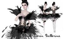 Boudoir -Black Swan Ballerina dress