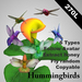 Hummingbirds (6types, copyable)