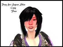 Pray for Japan Skin (boxed)