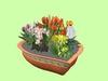 Plant Bowl Spring