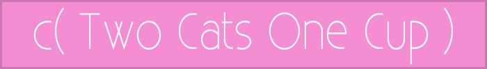Twocatsonecup banner