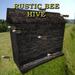 UD Bee Hive