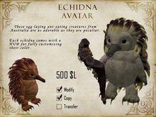 Tiny Echidna Avatar