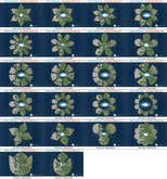 50% OFF SALE! 22 x Raw Terrains - Flowers Complete!