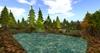 Pine%20forest%20summer%20park%20by%20felix%2050x50m%20241%20prim%20copy mody 002
