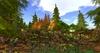 Pine%20forest%20summer%20park%20by%20felix%2050x50m%20241%20prim%20copy mody 006