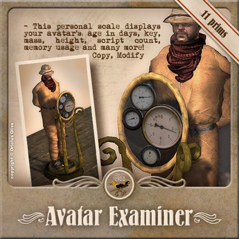 [OO] Avatar Examiner - Personal scale