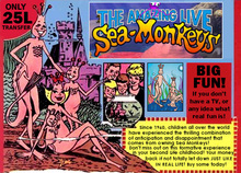 Mudlarks Sea Monkeys